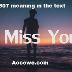 607 meaning in the text