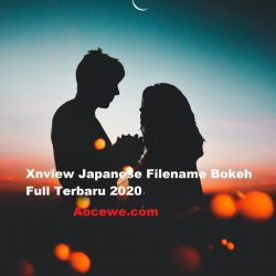 Xnview Japanese Filename Bokeh Full Terbaru 2020